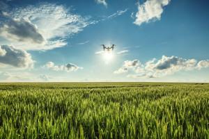 農業向け空撮